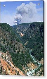 Yellowstone Afire Acrylic Print by Sandra Bronstein
