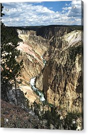 Yellowstone Canyon Acrylic Print by Laurel Powell