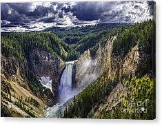 Yellowstone Canyon Lower Falls Acrylic Print