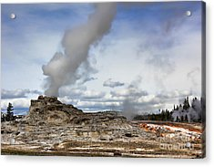 Yellowstone Castle Geyser Acrylic Print by Leslie Kirk