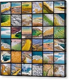 Yellowstone Colors Acrylic Print