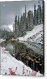 Yellowstone Early Snow Acrylic Print by Geraldine Alexander