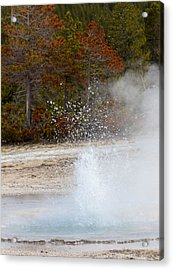 Yellowstone Geyser Acrylic Print