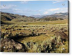 Yellowstone Landscape Acrylic Print by Sophie Vigneault