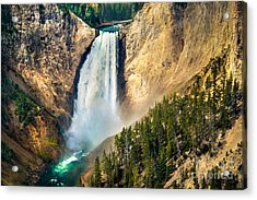 Yellowstone Lower Waterfalls Acrylic Print by Robert Bales