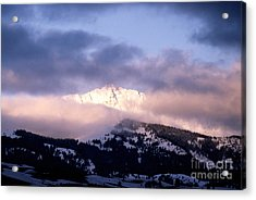 Acrylic Print featuring the photograph Yellowstone Morning by Sharon Elliott
