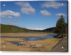 Yellowstone Park 2 Acrylic Print by Kenneth Cole