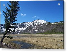 Yellowstone Park Beauty 1 Acrylic Print