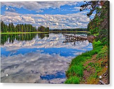 Yellowstone River Reflections Acrylic Print