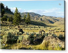 Yellowstone Scenery Acrylic Print by Sophie Vigneault