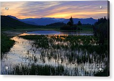 Yellowstone Sunrise Acrylic Print
