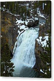 Acrylic Print featuring the photograph Yellowstone Upper Falls In Spring by Michele Myers