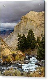 Yellowstone's Beauty Acrylic Print