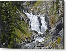 Yellowstone's Mystic Falls With Spring Flowers Acrylic Print by Bruce Gourley