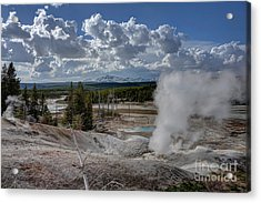 Acrylic Print featuring the photograph Yellowstone's Norris Geyser Basin by Bill Gabbert