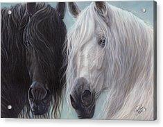 Yin-yang Horses  Acrylic Print by Wayne Pruse