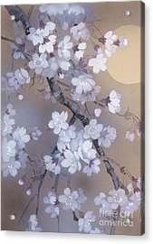 Yoi Crop Acrylic Print by Haruyo Morita