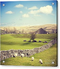 Yorkshire Dales With Dry Stone Wall Acrylic Print by Colin and Linda McKie