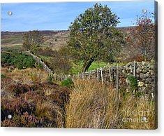 Yorkshire Moors England Acrylic Print