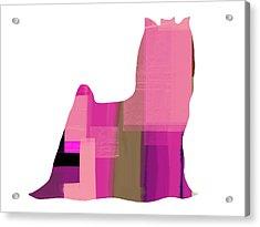 Yorkshire Terrier Acrylic Print by Naxart Studio