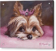 Yorkshire Terrier Princess In Pink Acrylic Print
