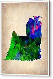 Yorkshire Terrier Watercolr Acrylic Print