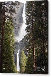 Yosemite Falls 2013 Acrylic Print by Audrey Van Tassell