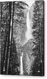 Yosemite Falls Black And White Acrylic Print by Bruce Gourley