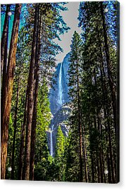 Acrylic Print featuring the photograph Yosemite Falls by Dany Lison