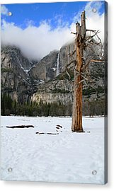 Yosemite In The Dead Of Winter Acrylic Print by Patricia Sanders