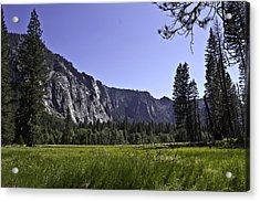 Yosemite Meadow Acrylic Print