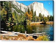 Half Dome Yosemite National Park Acrylic Print by Barbara Snyder