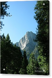 Yosemite Park Acrylic Print by Mini Arora