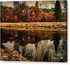 Yosemite Reflections Acrylic Print by Terry Garvin