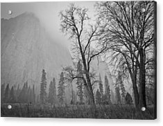 Acrylic Print featuring the photograph Yosemite Storm by Priya Ghose