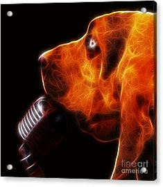 You Ain't Nothing But A Hound Dog - Dark - Electric Acrylic Print by Wingsdomain Art and Photography