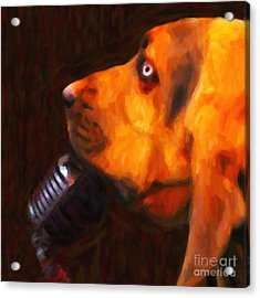 You Ain't Nothing But A Hound Dog - Dark - Painterly Acrylic Print by Wingsdomain Art and Photography