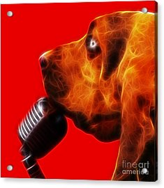 You Ain't Nothing But A Hound Dog - Red - Electric Acrylic Print by Wingsdomain Art and Photography