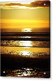 You Are The Salt Of The Earth And The Light Of The World Acrylic Print by Sharon Soberon