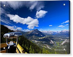 You Gotta See This... Acrylic Print