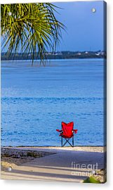 You Should Be Here Acrylic Print by Marvin Spates