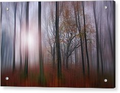 You Should Have Seen. Acrylic Print