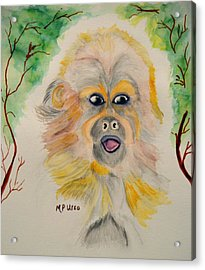 You Silly Monkey Acrylic Print by Maria Urso