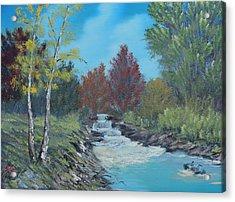 Young Cascades Acrylic Print