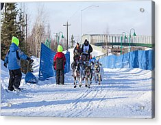 Young Fans Of Mushers Acrylic Print by Tim Grams