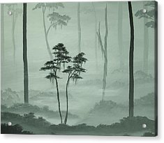 Young Tree In An Old Forest Acrylic Print by Anna Bronwyn Foley