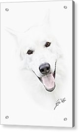 Acrylic Print featuring the digital art Young Wolf by Erika Weber