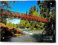 Your Crossing  Acrylic Print by Tim Rice