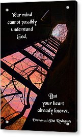 Your Mind Cannot Understand Acrylic Print by Mike Flynn
