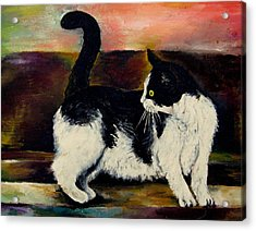 Your Pets Commission Me To Paint Acrylic Print by Carole Spandau